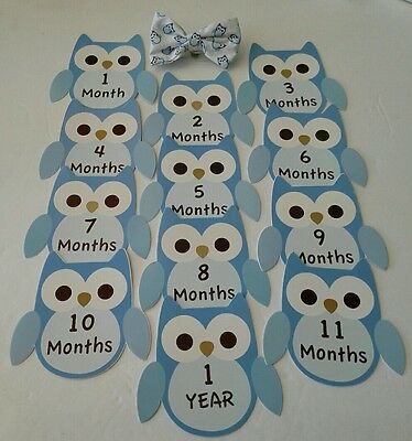 Baby's first year Blue Owl Bow Tie & 12 Monthly Stickers for boy. By Lovespun