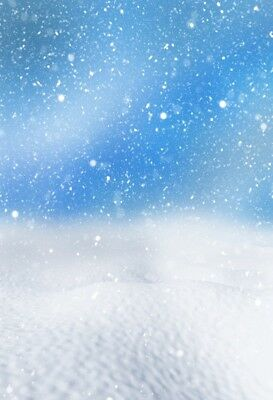 Winter Snow Fall Outdoor Photo Backdrop 2.6x4ft Background Photography Prop Show