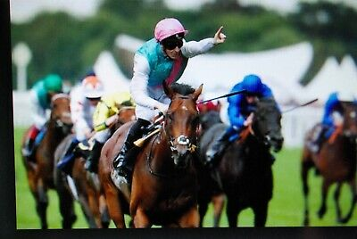 Percentage Betting horse racing system Nearly 60% strike rate Over 50% ROI
