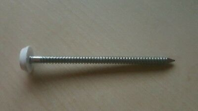 30 x 2.00mm BLACK UPVC POLY TOP PINS//NAILS PLASTIC HEADED A4 STAINLESS STEEL
