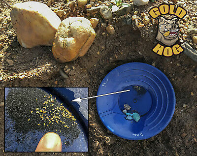 Gold Paydirt - Raw with Gold and Gems Concentrates