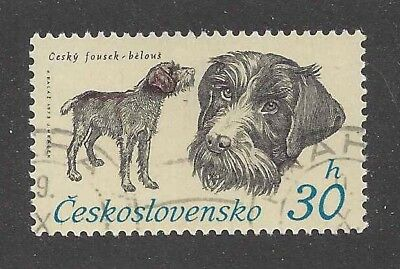 Dog Art Postage Stamp GERMAN WIREHAIRED POINTER POINTING GRIFFON Czech CTO