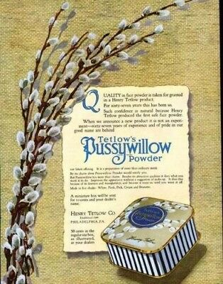 1916 Tetlow Pussywillow Powder Beauty Fashion Face Ad7124
