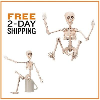 Halloween Skeleton Full Body Holiday Movable Joints Home Decoration Outdoor
