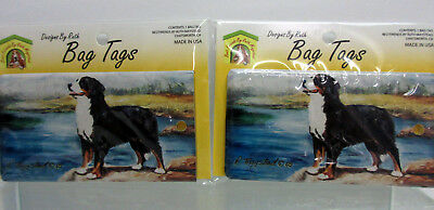 New Bernese Mountain Dog Bag Tag 2 Luggage / Pet Carrier Tags By Ruth Maystead