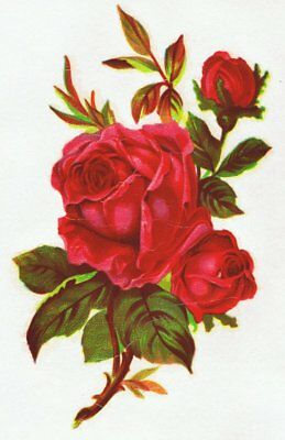 1 Red Rose Victorian Design Vintage Decal Transfer Floral Shabby Chic Furniture