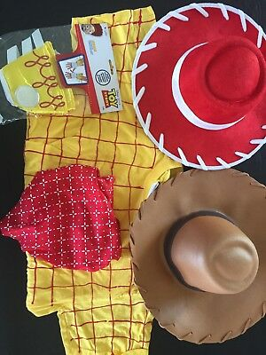 Woody And Jessie Costume Lot For Adults