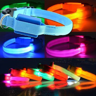 Led Dog Collar Rechargeable Light Up Safety Pet Collar + 3 Glowing Modes G1
