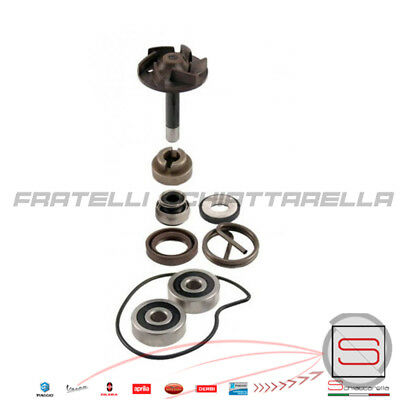 Kit Revisione Pompa Acqua X9 Evolution Beverly Rst 250 18018
