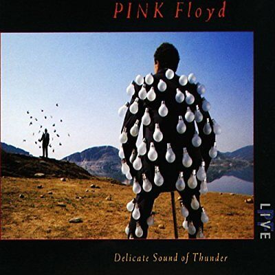 Pink Floyd-Delicate Sound of Thunder (UK IMPORT) CD NEW