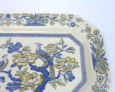 Ashworth Bros Asiatic Birds Platter, English Transfer Ware Blue Yellow Very Rare