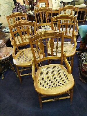 6 Antique Maple birds eye? Unique Back, Cane Seat Side Chairs Turned Spindle Leg