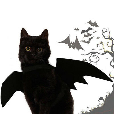 Lovely for small pet dog cat bat wings halloween wings halloween costumePDQ