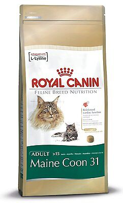 Royal Canin Maine Coon 31 Cat Adult Dry Cat Food Balanced And