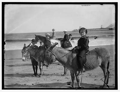 Children riding donkeys,beaches,animals,docks,piers,Detroit Publishing Co,1890