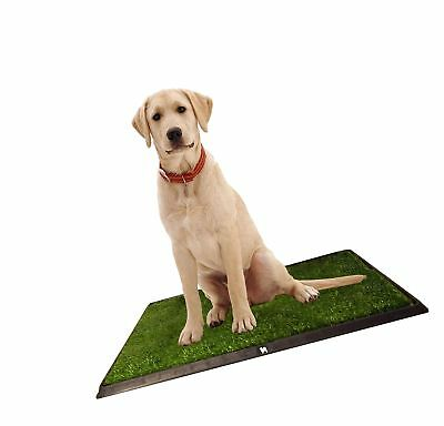 Puppy Potty Grass Toilet Trainer  Tray for Dogs and Puppies Lar... Free Shipping