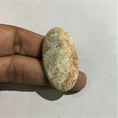 47.2 Cts 100% Natural Pink Fossil Coral Cab Handcrafted Loose Gemstone L#946-33