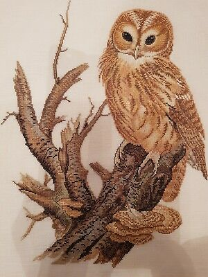Vintage Hand Embroidered Cross Stitch of Owl