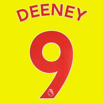 Deeney 9 18/19 Premier League Watford Home Red Name & Number Set = Adults