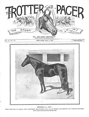 TROTTER & PACER  Antique Horse Racing Journal - 5 RARE VERY EARLY ISSUES 1895-98
