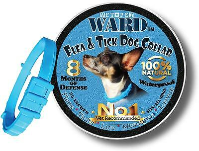Flea Tick Collar For Pets Dogs Cats, One Size Fits All Vet Recommended 8 Months