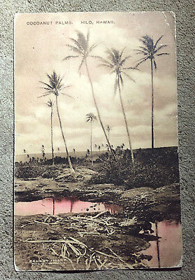 antique ALBERTYPE HAWAIIAN POSTCARD ERNEST MOSES PHOTO COCOANUT PALMS HILO