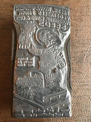 Vintage Northrup King & Co Seeds Farm Printers Block Letterpress Stamp Ad
