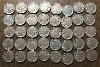 Roll (40 coins) 1926 Buffalo/Indian Head Nickels - No Reserve