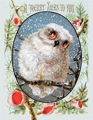 Victorian Trading Co White Snow Owl Merry X-Mas to You Christmas Greeting Cards