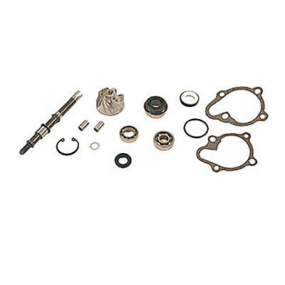 5506510 Kit Revisione Pompa Acqua Malaguti F18 Warrior 125 2000/2002