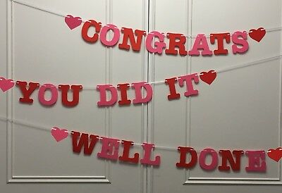 Well Done - Congrats - You Did It - Banners Congratulations Bunting Red Pink