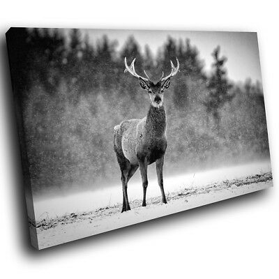 A376 Black Stag Winter Forest Funky Animal Canvas Wall Art Large Picture Prints