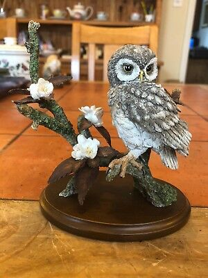 Country Artists Hand Painted Hand Crafted Little Owl With Wild Cherry Blossom