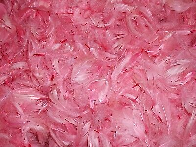 BIODEGRADABLE CONFETTI - Hand dyed feathers - ultimate confetti - Pale Pink