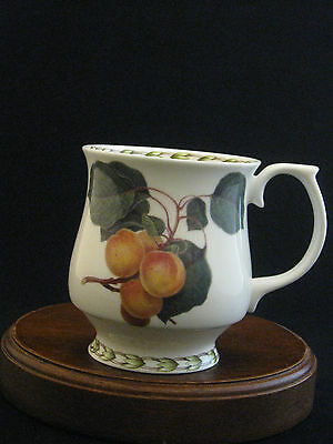 "Hookers Fruit The Royal Horticultural Society ""Apricots"" China Mug by Queen's"