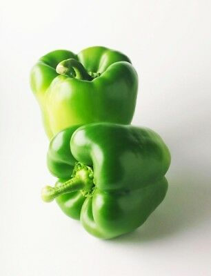 1 Pack 100 Green Sweet Pepper Seeds Paprike Capsicum Organic Vegetables S042