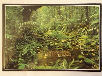 Jenolan Caves - New South Wales - Australia - Vintage - Collectable - Postcard.
