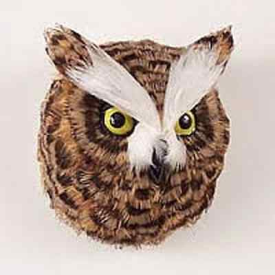 OWL FEATHER MAGNET! birds of praY!  GIFT BOX INCLUDED. HOLIDAY GIFTS. COLLECT!
