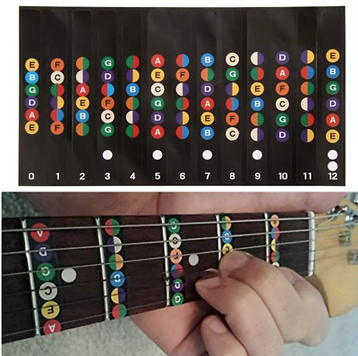 Guitar Fretboard Note Decal Finger Board Musical Scale Map Sticker Trainer Learn