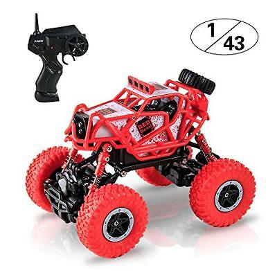 BIG HOUSE RC Car, 1:43 Scale Electric High Speed RC Truck 2.4GHz 4WD Offroad as