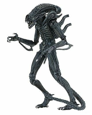 "Alien-  7"" Scale Action Figures - Ultimate - (1986) Blue Alien Warrior -NECA"