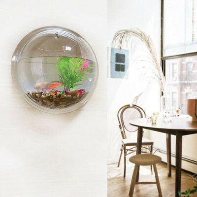 Home Acrylic Wall Fish Tank Mounted Hanging Bubble Bowl Plant Fish Aquarium Pot