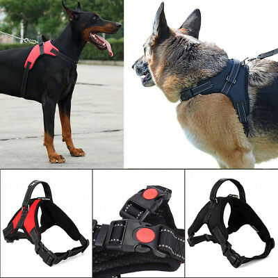 Pet Large Dog Soft Adjustable Harness Pet Walk Out Hand Strap Vest Collar USA