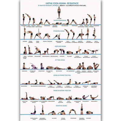 Y950 Yoga Exercise Bodybuilding Chart Fan Hot Poster 14x21 24x36 27x40IN