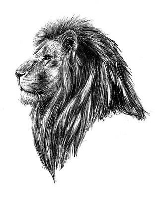 High Quality 11.5cm x 9cm Temporary Tattoo Wild Lion Head Waterproof Body Art