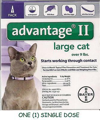 Advantage II Flea Control Large Cat Over 9 lbs - ONE (1) DOSE - BEWARE OF FAKES!