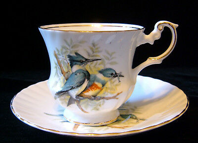 Queen's Rosina Fine Bone China Birds of America Blue Kingfisher Tea Cup & Saucer