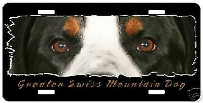 "Greater Swiss Mountain Dog  "" The Eyes Have It ""  Plate"