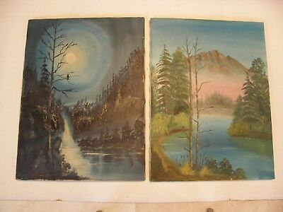 Vintage Lot Of 2 Oil Paintings On Canvas On Wood Frame Signed By Erika Z 1989