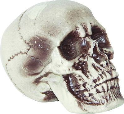 Morris Costumes Plastic Great Realistic Skull 7 Inches Decorative Prop. SS72202